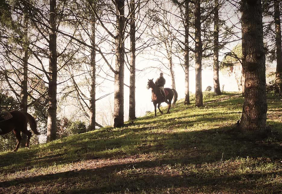 Passeggiate a cavallo - Agriturismo Parco del Grep