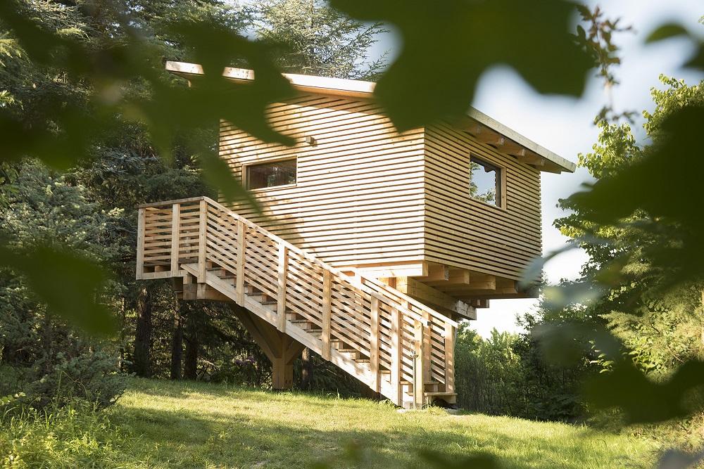 Agriturismo Parco del Grep - Monferrato, Piemonte - Casa sugli alberi La Pineta