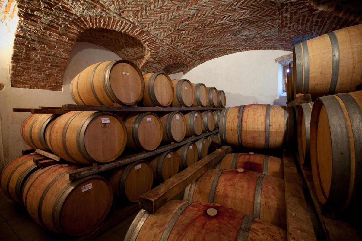Tour enologici e degustazione vini- Agriturismo Parco del Grep - Monferrato, Piemonte
