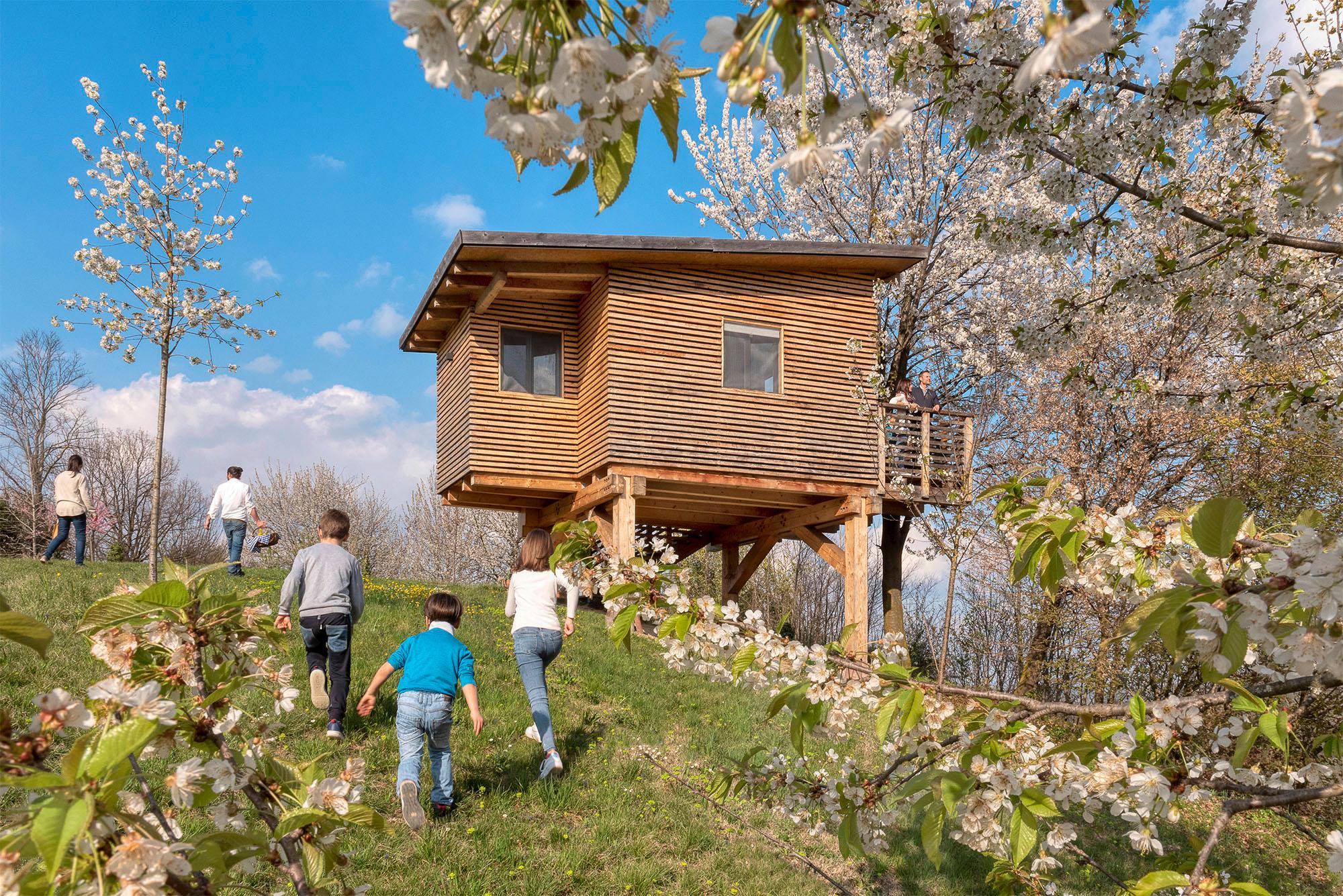 Agriturismo Parco del Grep - Monferrato, Piemonte - Casa sugli alberi I Ciliegi