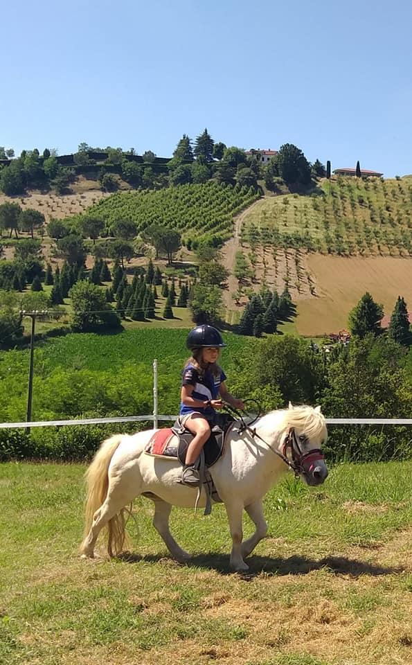 Gite con pony - Agriturismo Parco del Grep - Monferrato, Piemonte - ph. ASD Red Horse