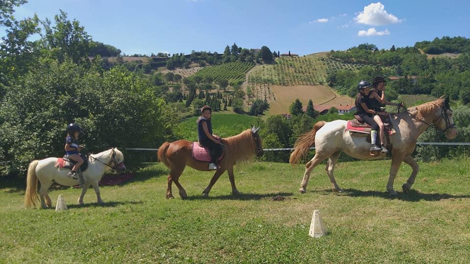 Gite con pony e cavalli - Agriturismo Parco del Grep - Monferrato, Piemonte - ph. ASD Red Horse